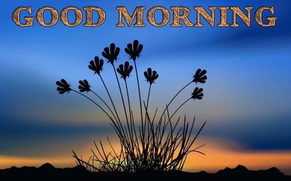 A Wonderful Good Morning-wm13002