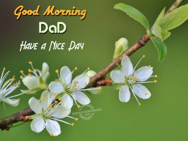 Good Morning Dad Have A Nice Day