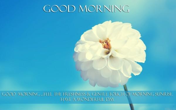 Good Morning Feel The Fresh Touch-wm13030