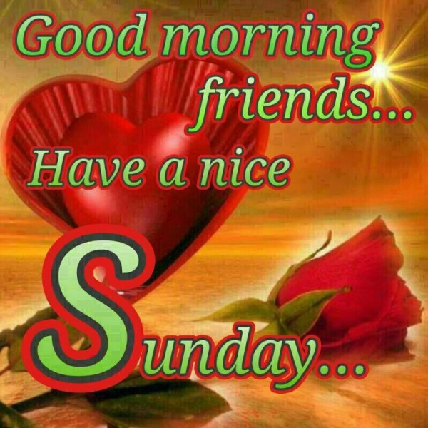 Good Morning Friends Have A Nice Sunday-wm408