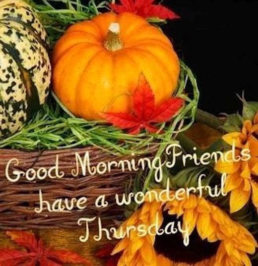 Good Morning Friends Have A Wonderful Thursday-wm503
