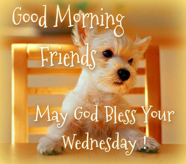 Good Morning Friends May God Bless Your Wednesday-wm807