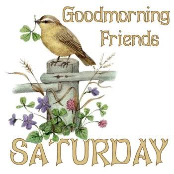 Good Morning Friends-Saturday-wm306