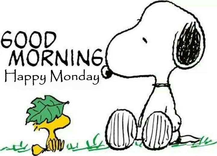 Good Morning Monday In French : Good morning happy monday