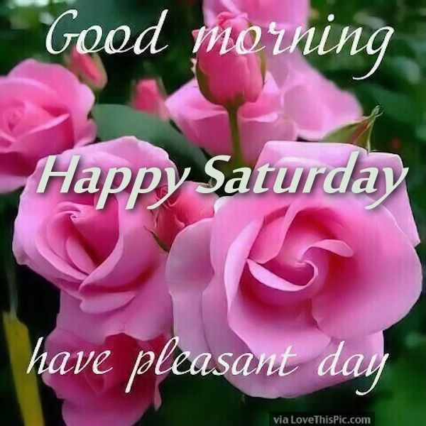 Good Morning Happy Saturday Have A Pleasent Day
