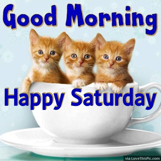 Good Morning-Happy Saturday !