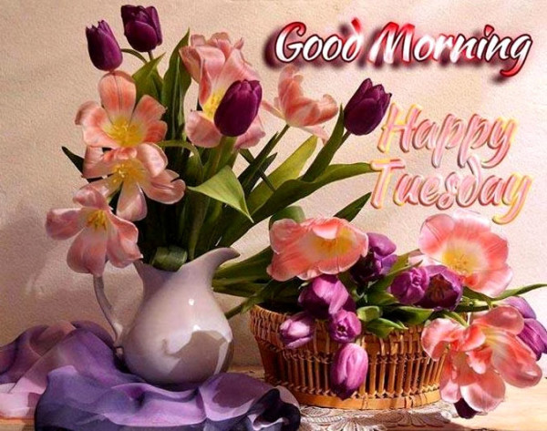Good Morning Happy Tuesday-wm712