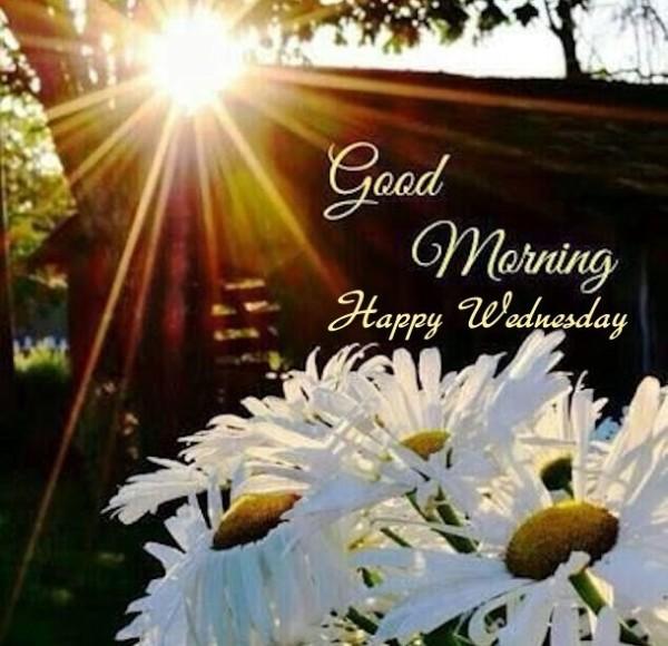 Good Morning-Happy Wednesday-wm835