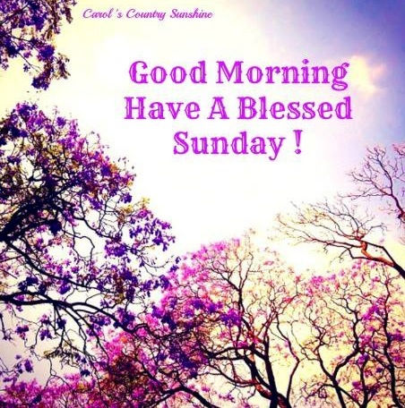 Good Morning Have A Blessed Sunday-wm411