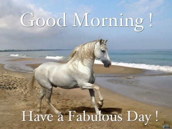 Good Morning Have A Fabulous Day-wm1613