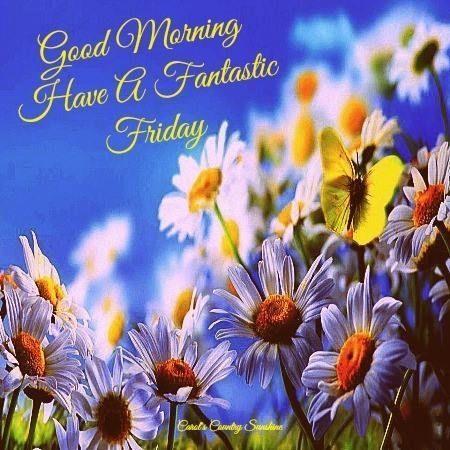 Good Morning Have A Fantastic Friday-wm117