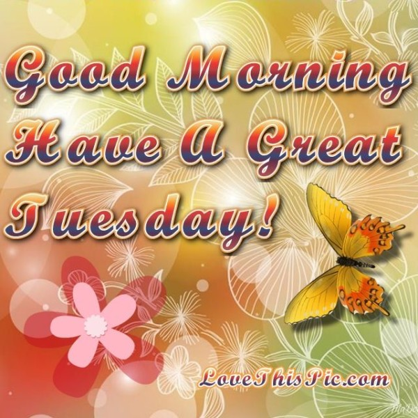 Good Morning Have A Great Tuesday !!-wm714