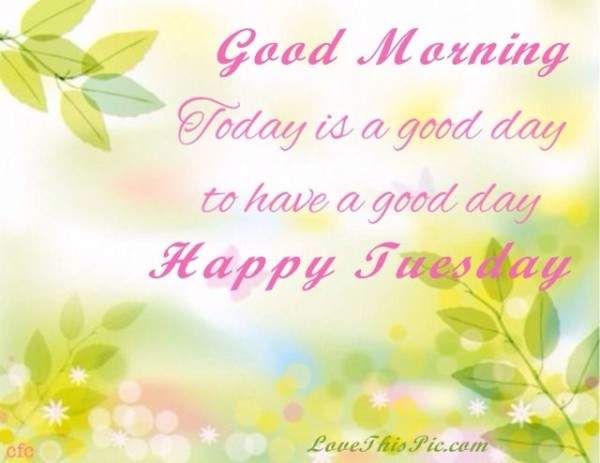 Good Morning-Have A Happy Tuesday-wm728