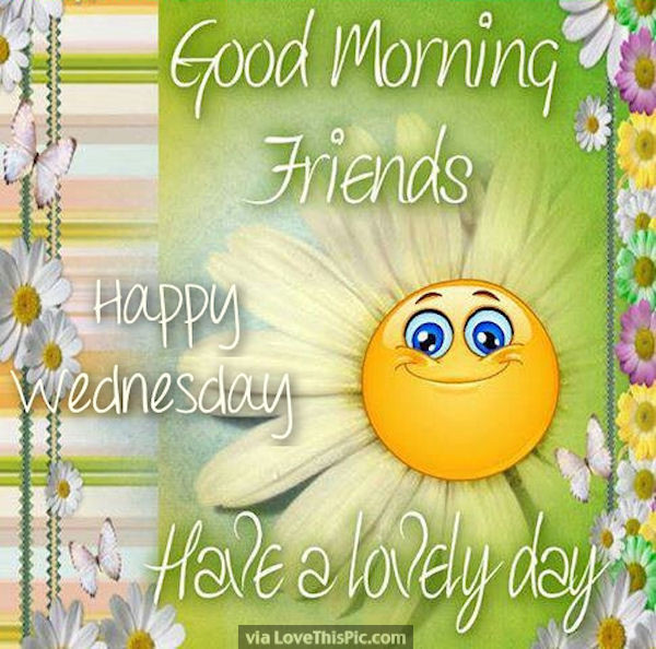 Good Morning Have A Lovely Day-wm820