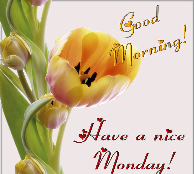 Good Morning Wishes On Monday Pictures, Images - Page 2