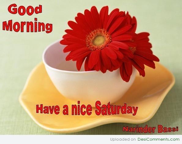 Good Morning Have A Nice Saturday