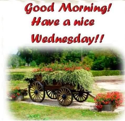Good Morning Have A Nice Wednesday !!-wm821