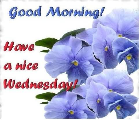 Good Morning-Have A Nice Wednesday-wm836