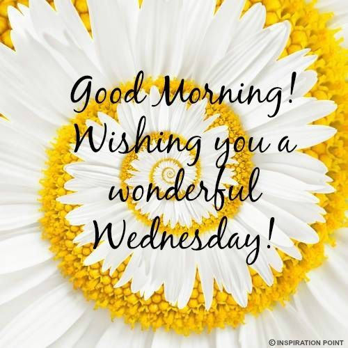 Good Morning Have A Wonderful Wednesday !