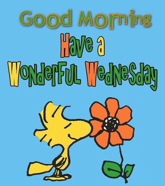 Good Morning Have A Wonderful Wednesday !-wm913