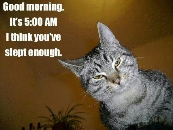 Good Morning I Think You've Slept Enough-wm1115