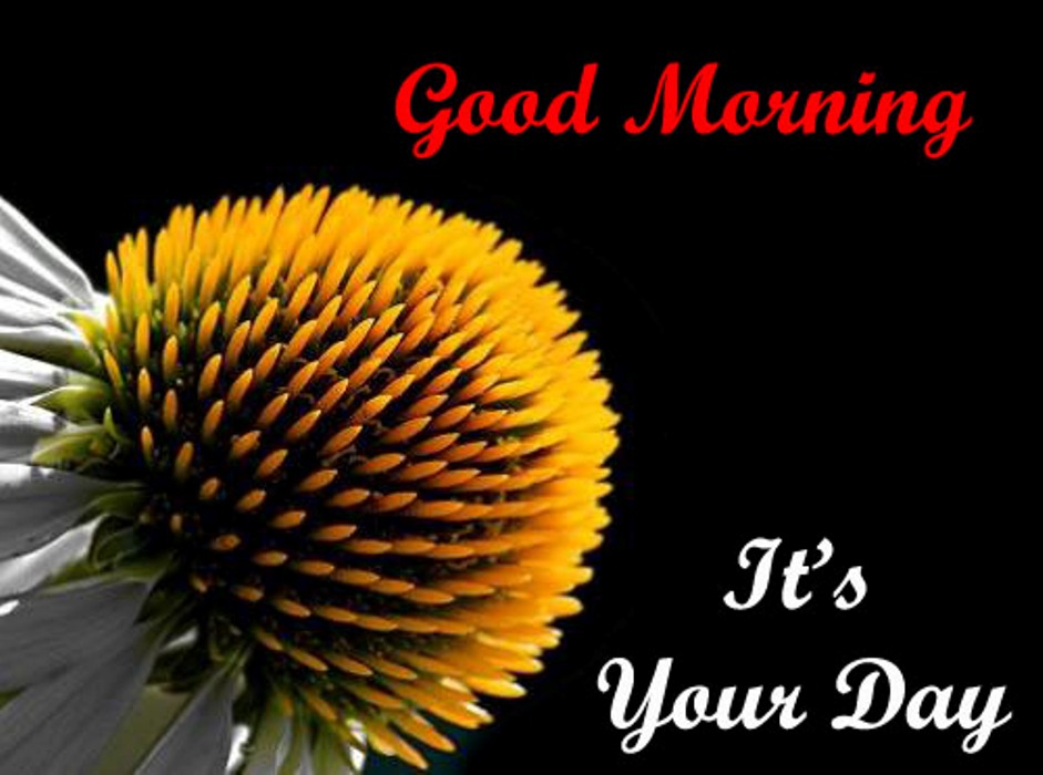 good morning it s your day