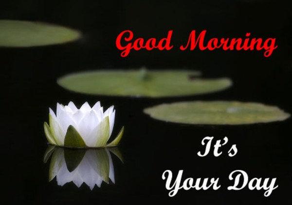 Good Morning Its Your Day