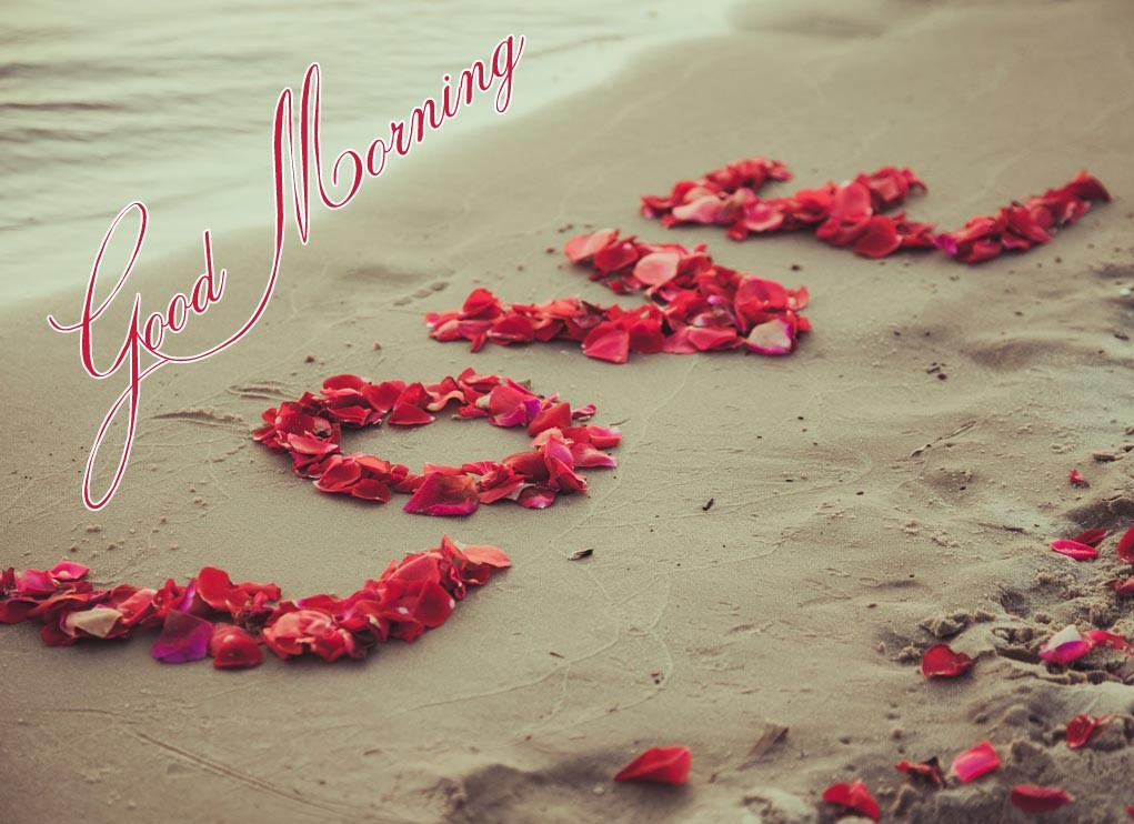 Good morning wishes for love pictures images page 13 good morning love voltagebd Images