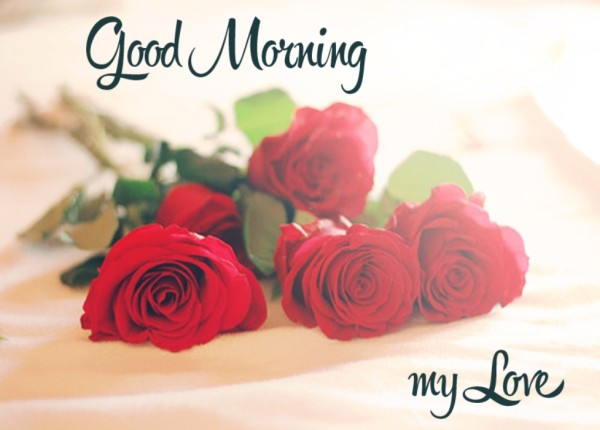 Good Morning My Love Sending You Roses-wm13048