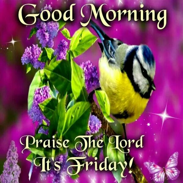 Good Morning Praise The Lord It's Friday-wm123