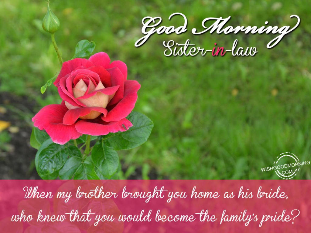 Good Morning Sister Images : Good morning wishes for sister in law pictures images