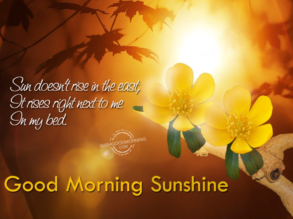 Good Morning My Sunshine In German : Good morning wishes for wife pictures images page