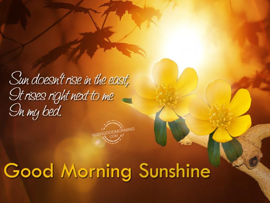 Good Morning Flirty Meme : Good morning sunshine related keywords