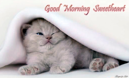 Good Morning Girlfriend In Spanish : Good morning sweetheart