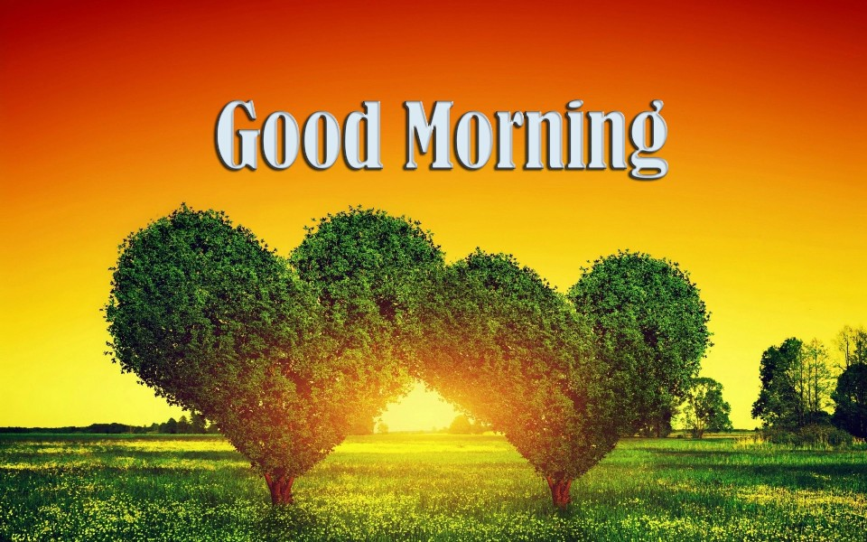 Beautiful Hd Good Morning Love Images Wallpaper Of couple : Good Morning Wishes With Heart Pictures, Images