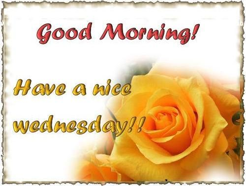 Good Morning Wednesday-wm831