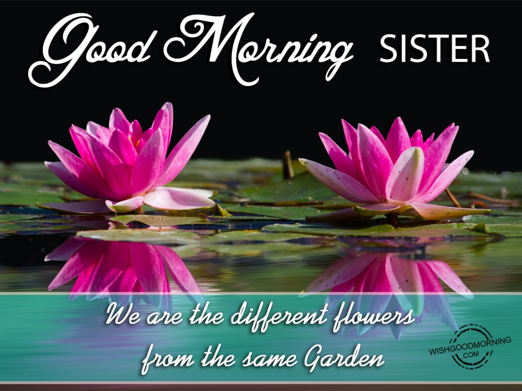 Good Morning Sister Images : Good morning wishes for sister pictures images page