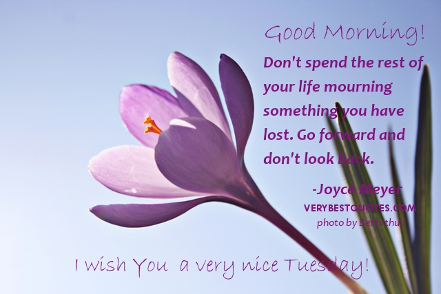 Good Morning Wishes On Tuesday Pictures Images
