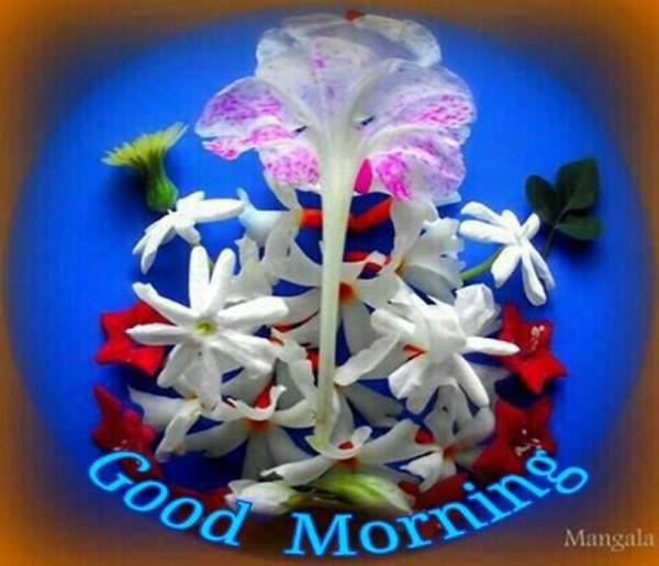 Good Morning Wish!-wm13059