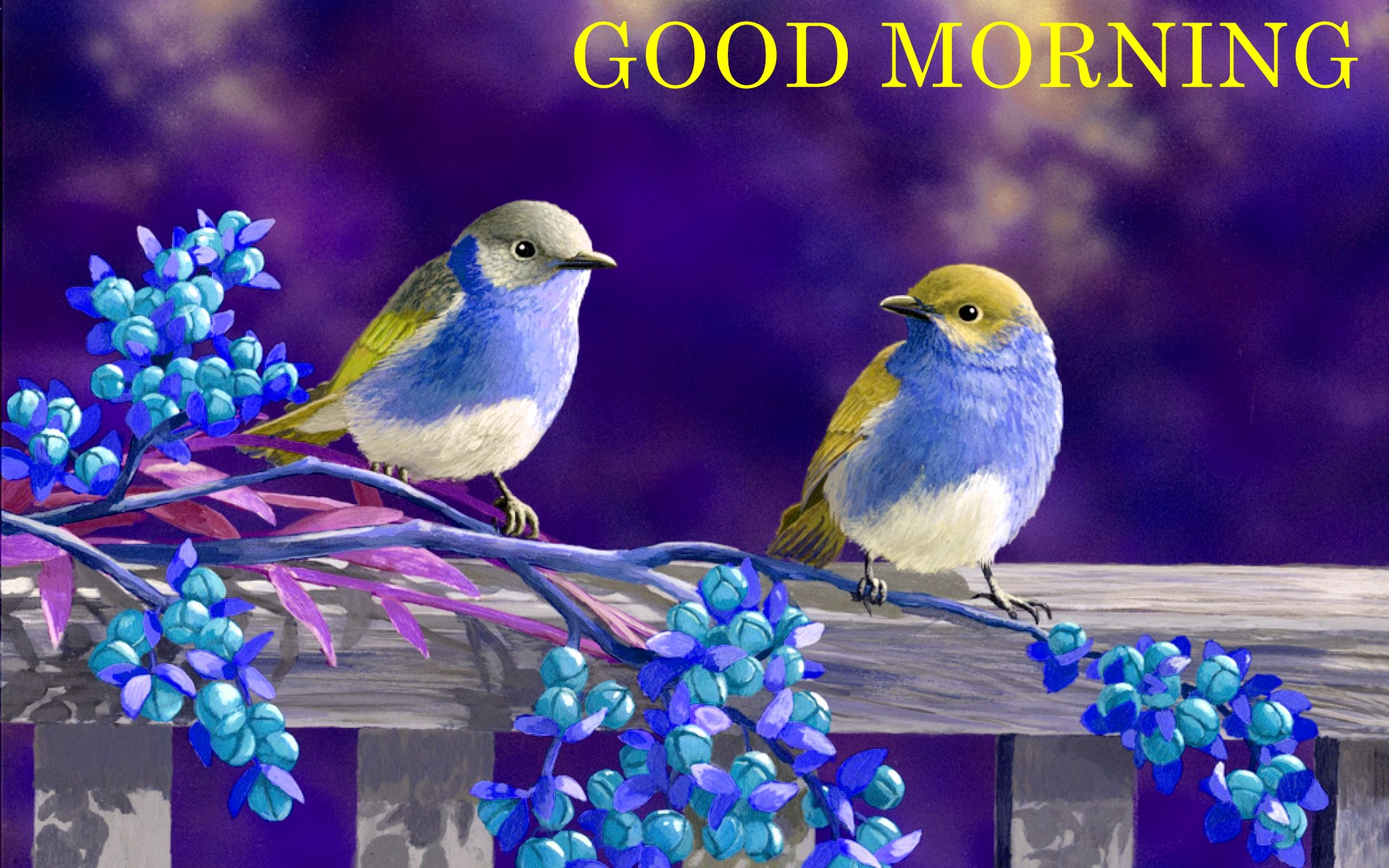 Good Morning Wishes With Birds Pictures, Images - Page 23