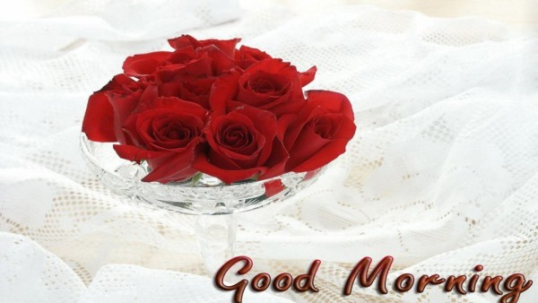 Good Morning With Red Roses-wm13093