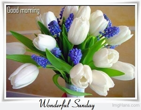 Good Morning Wonderful Sunday