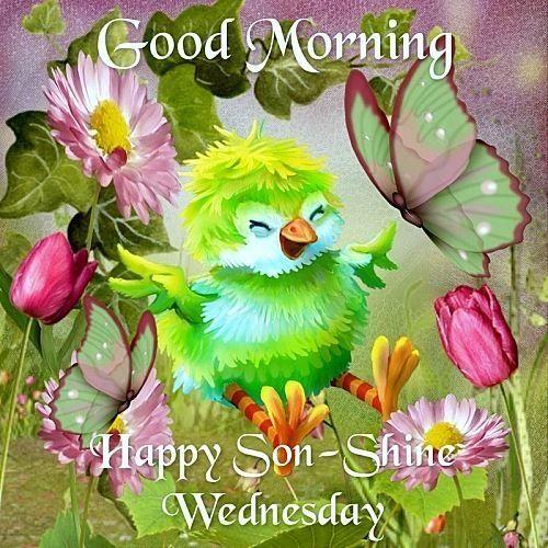 Good Morning happy Sunshine Wednesday-wm808