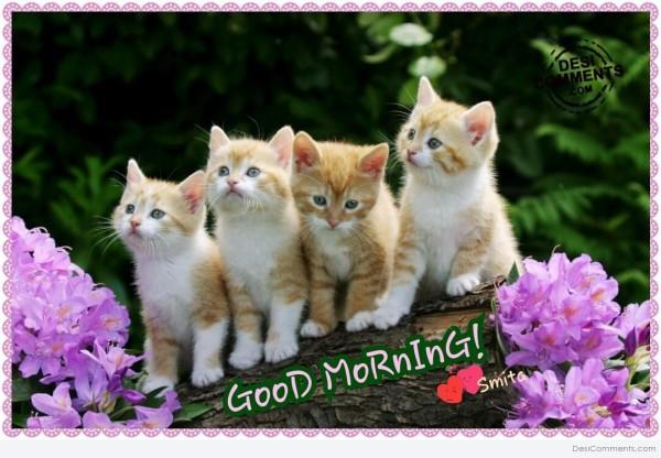 Good Morning-wm1133
