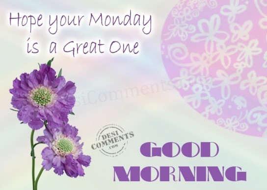 Great Monday Morning-wm230
