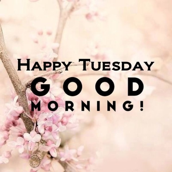 Happy Tuesday Good Morning !-wm731