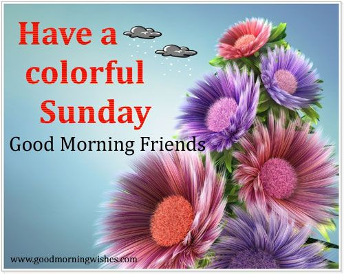 Have A Colorful Sunday Good Morning-wm434
