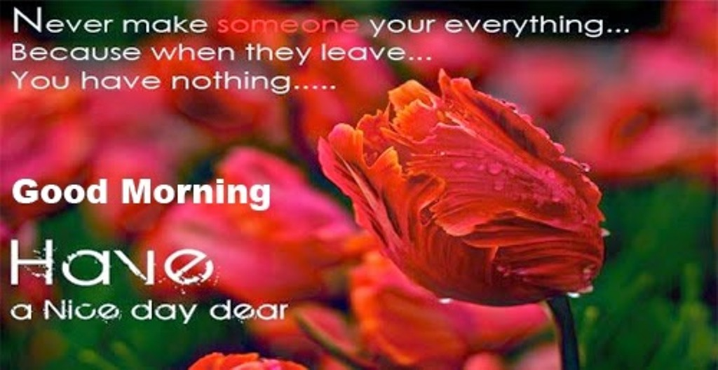 Have A Nice Day My Love Quotes Top 50 Romantic Good Morning My Love