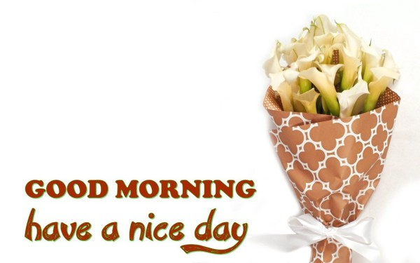 Have A Nice Day Good Morning !-wm13113