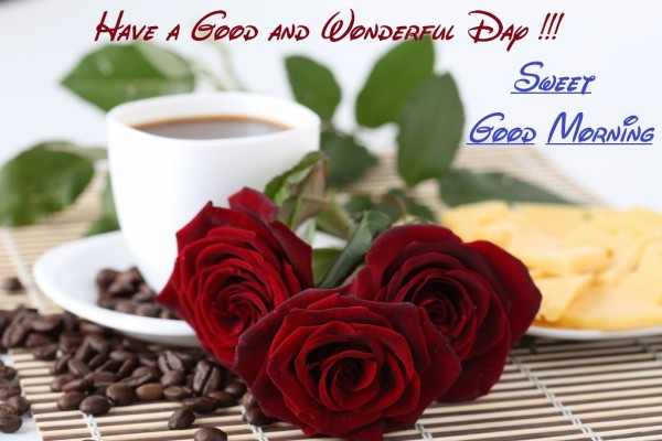 Have A Wonderful Day Good Morning-wm13117
